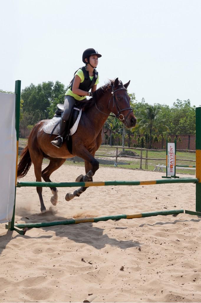 Equestrian-ARY-5
