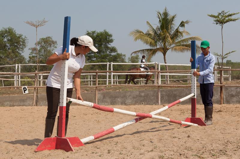 Equestrian-ARY-6