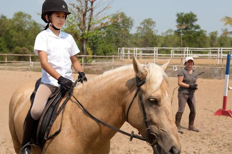 Equestrian-ARY-9