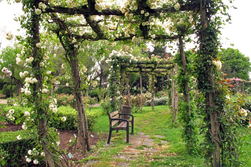 Parc-de-Cervantes-rose-gardens