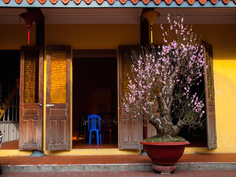 Oi Vietnam - Feb 2015_Tet Myth_Q.7_0087_NT