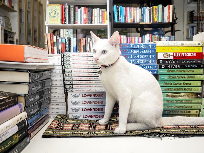 Boa Bookstore 4