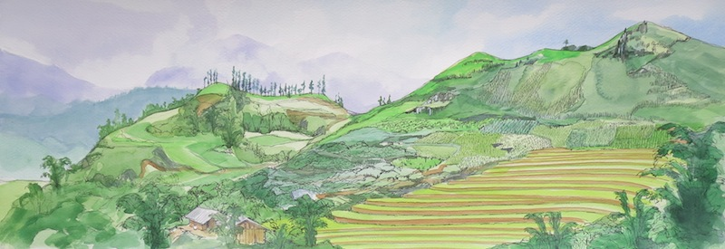 Ta-Phin-terraces-Bridget-March-Watercoour-and-ink-676-x-24-8750000