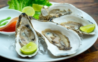 OiVietnam august2015_five oysters_four raw oysters_DSC8069_NT OiVietNam