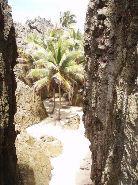 Togo Chasm oasis (OiVietNam_3N)