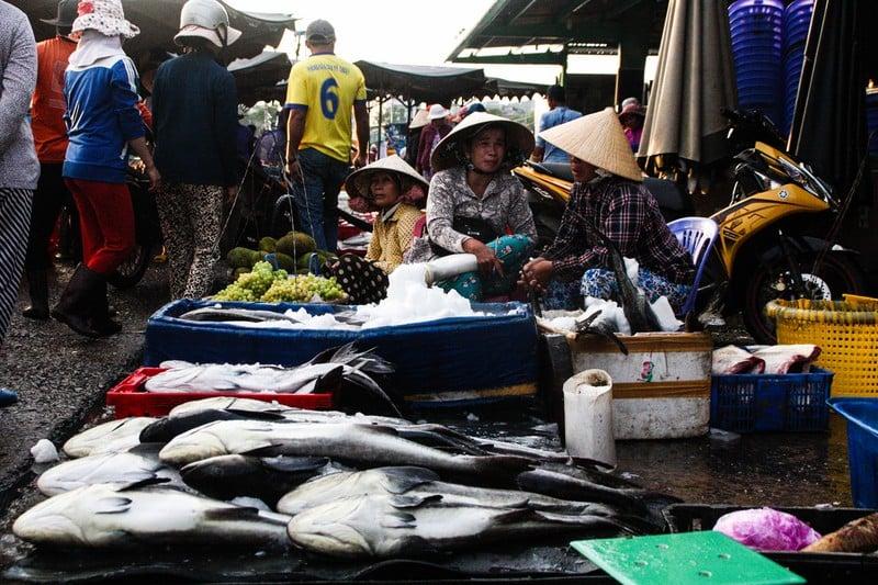 The Phan Thiet Fish Market