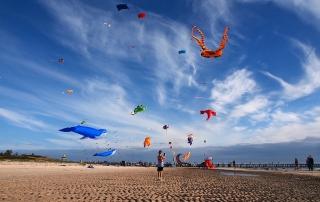 kite-festival-semaphore41