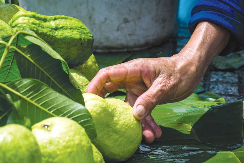 My life as … a fruit seller