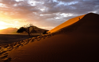 Dune 45 in the Namib Desert, Namibia - Africa in Focus - Image by James Pham-17
