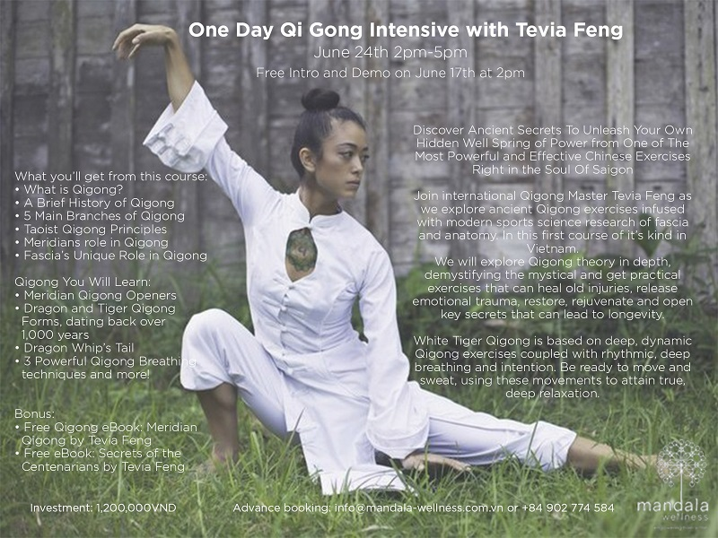 One day Qigong intensive with Tevia Feng - Oi