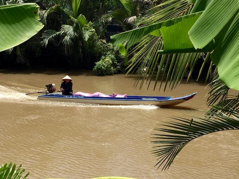 Mekong OI