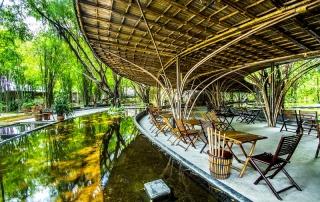 Oi Vietnam-May2015_bamboo__DSC9594-Ngoc Tran