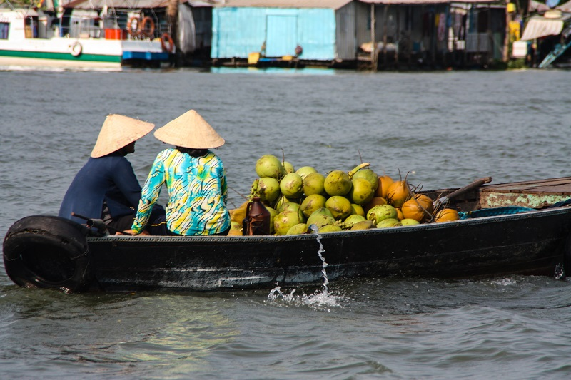 Transporting coconuts on the river - James Pham-7