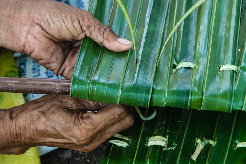 Weaving palm leaves - James Pham-6