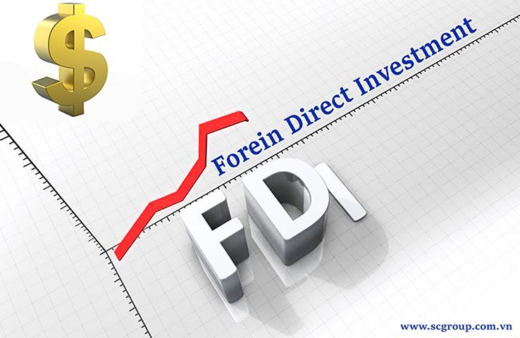 FDI 01