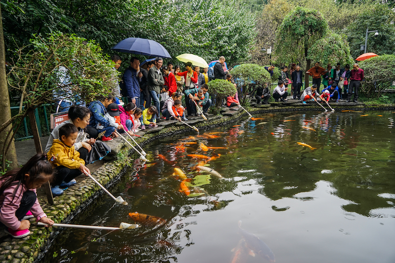 10 - Feeding the fish in People's Park